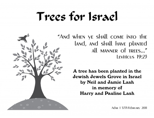 Jewish National Fund | Plant a Tree in Israel