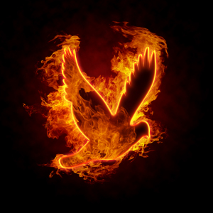 Dove on fire